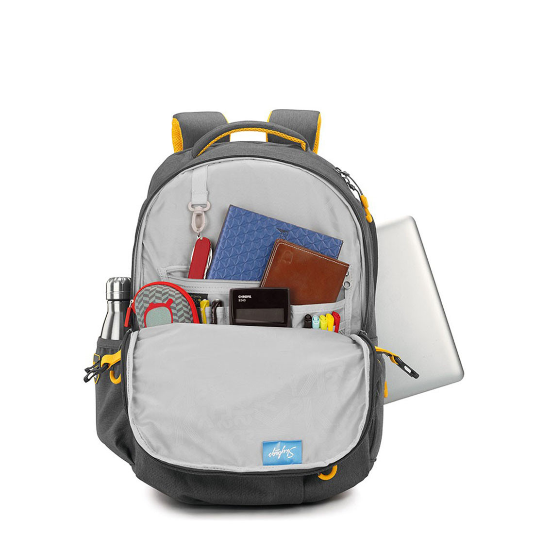 Skybags Ion 02 Grey